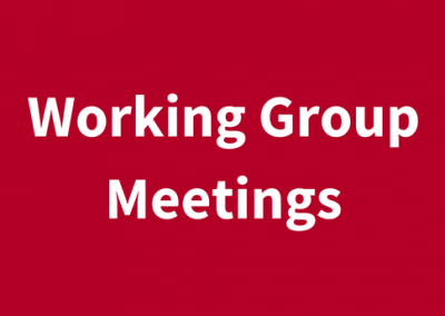 (English) Working Group Meetings