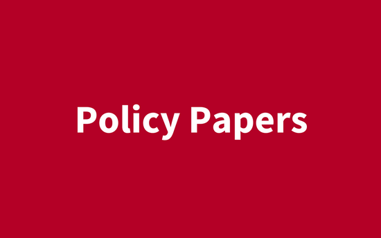 [:en]Policy Papers[:]